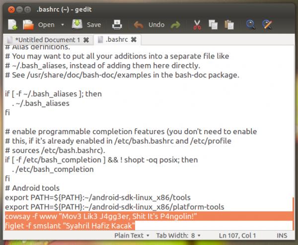 customize terminal, cantikkan terminal, install cosway in ubuntu, install figlet in ubuntu, jadikan terminal di Ubuntu Linux Mint, how to customize terminal like Linux Mint, Terminal Linux Mint, Ubuntu 12.04, add picture in terminal ubuntu
