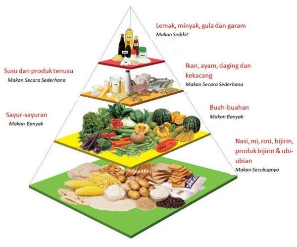 sistem piramid makanan, chia seed murah, kelebihan chia seed
